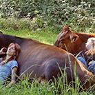 Такая корова нужна самому